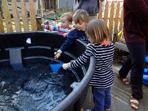 Backyard home Aquaponics system