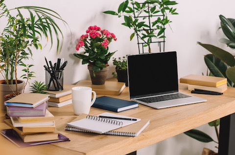 oxygen giving plants, improve productity working from home