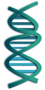 Online gene testing for health