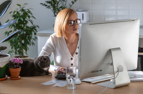 Are cats your perfect work at home partner